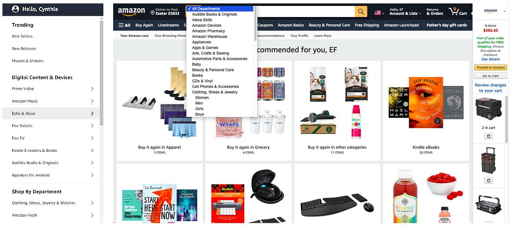 Amazon Information Architecture-1