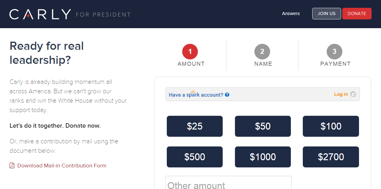 Carly branded donations page