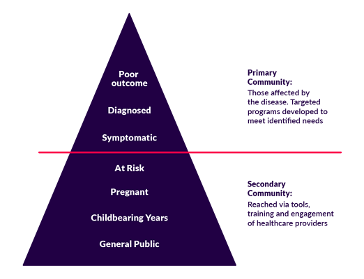 """Pyramid that is divided into two sections, """"Primary audience"""" on top and """"Secondary audience on bottom."""" Primary audience is sub-divided into levels, which are labeled from top to bottom: Poor outcome, Diagnosed, Symptomatic, At Risk. Secondary audience is also sub-divided into levels, which are labeled from top to bottom: Pregnant, Childbearing Years, General Public."""
