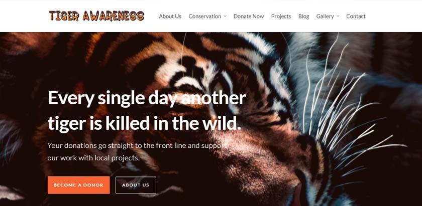 tiger-image-resized-1.jpg